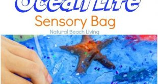 Easy Ocean Life Sensory Bag for Toddlers and Preschoolers
